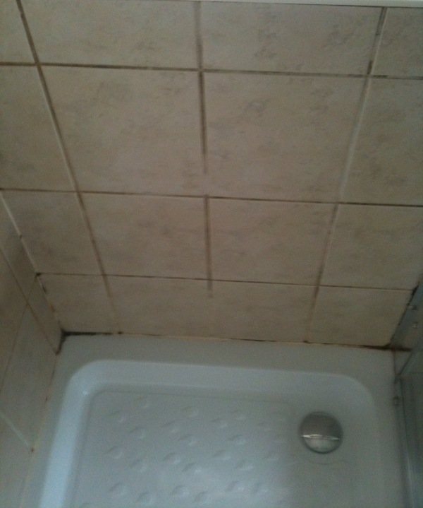 Shower Cubicle Before Cleaning
