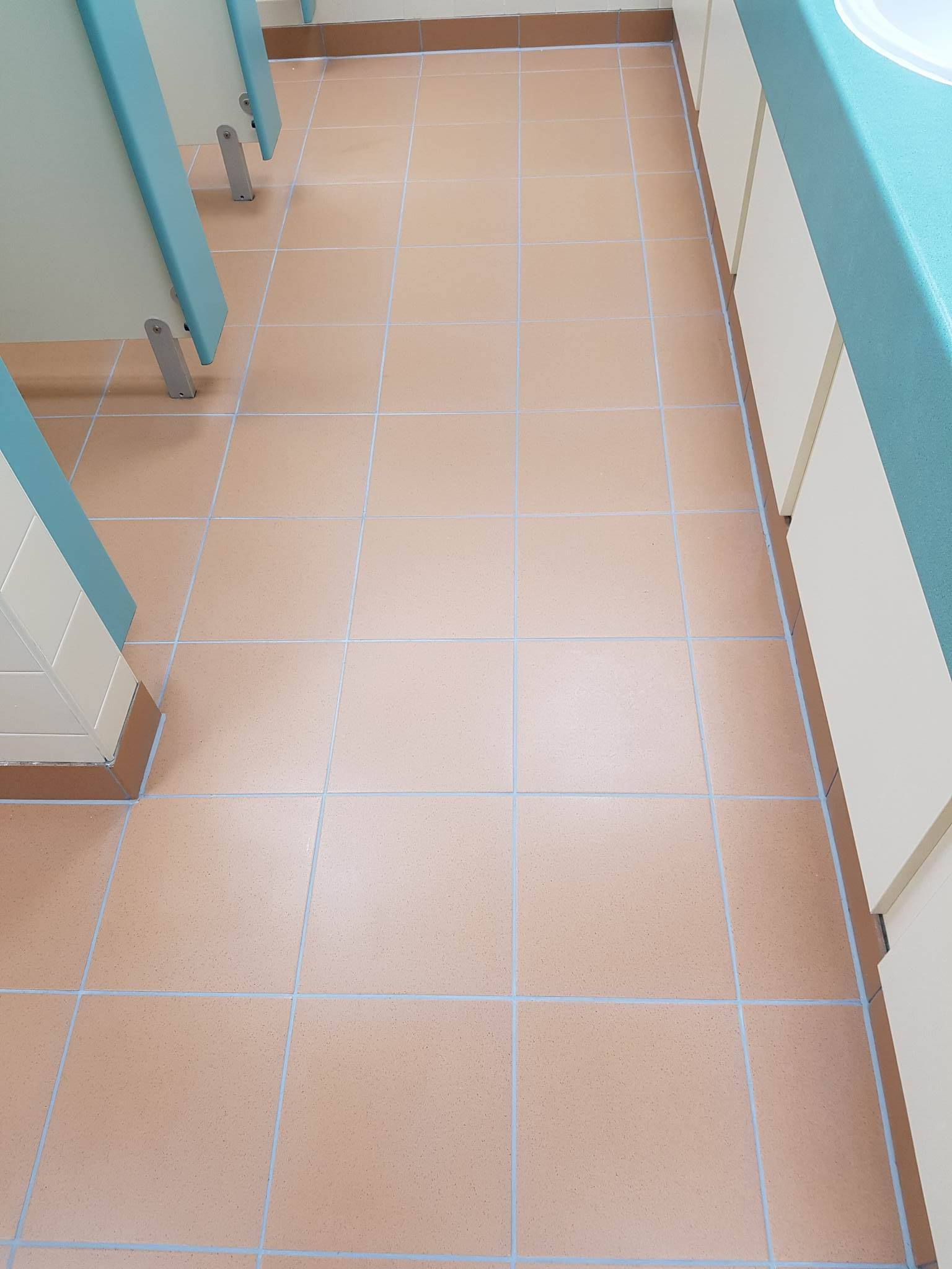 Toilet Floor at Corporate Offices Manchester After Grout Colouring