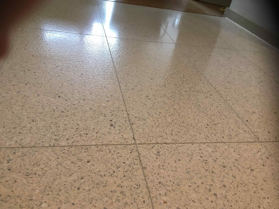 Terrazzo Kitchen Floor After Cleaning Closeup Skyline Apartments Manchester