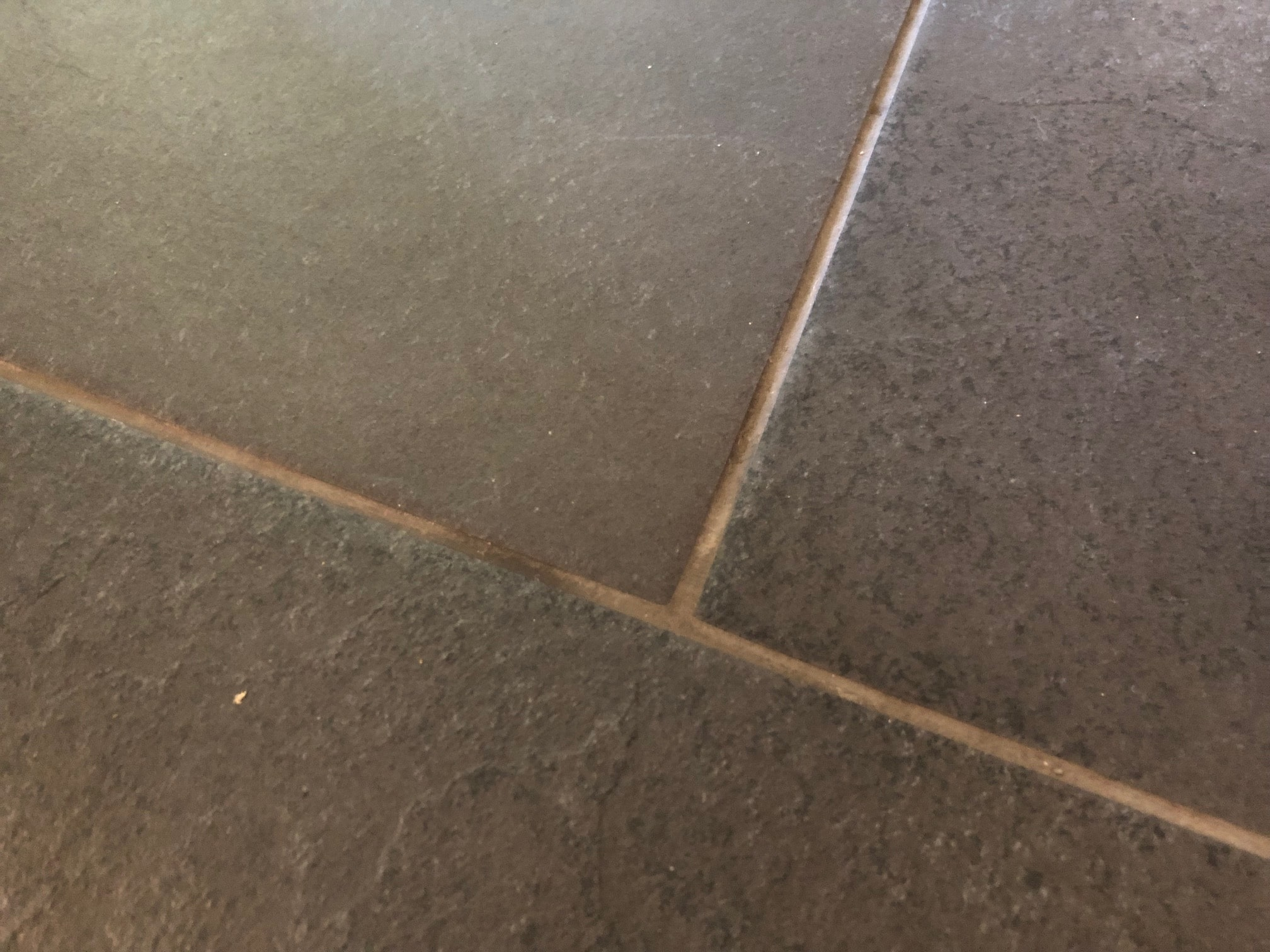 Slate Look Porcelain Tile and Grout Before Cleaning Bury