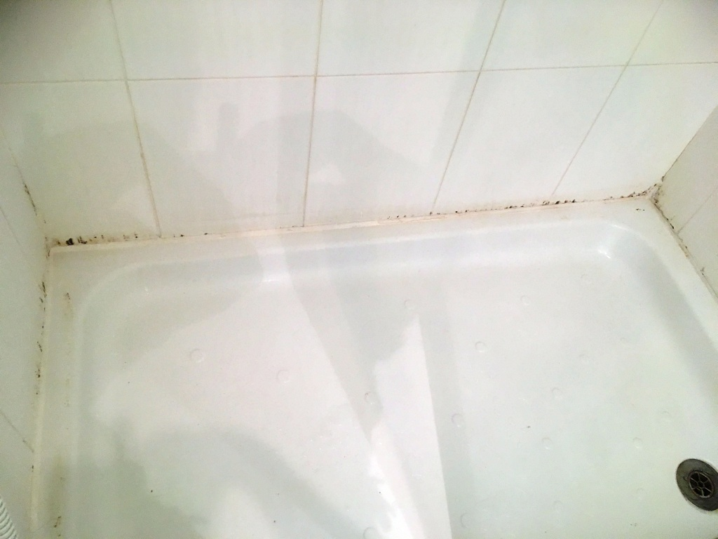 Ceramic Tiled Bathroom Before Cleaning in Romiley